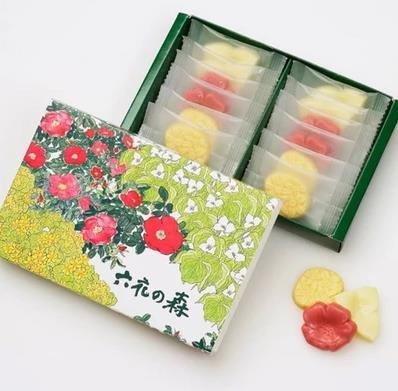 北海道 六花亭彩色森林系 3種口味12枚 花瓣巧-詳情-圖片1